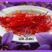https://saffronqaen.com/price-of-pushal-saffron-in-mashhad/