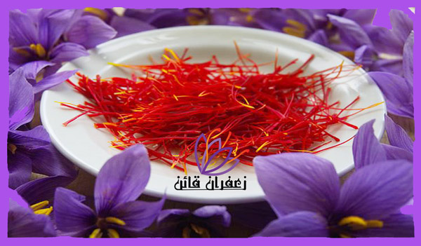 قیمت زعفران پوشال در مشهد