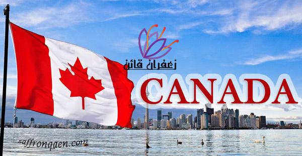 آمار صادرات زعفران به کانادا