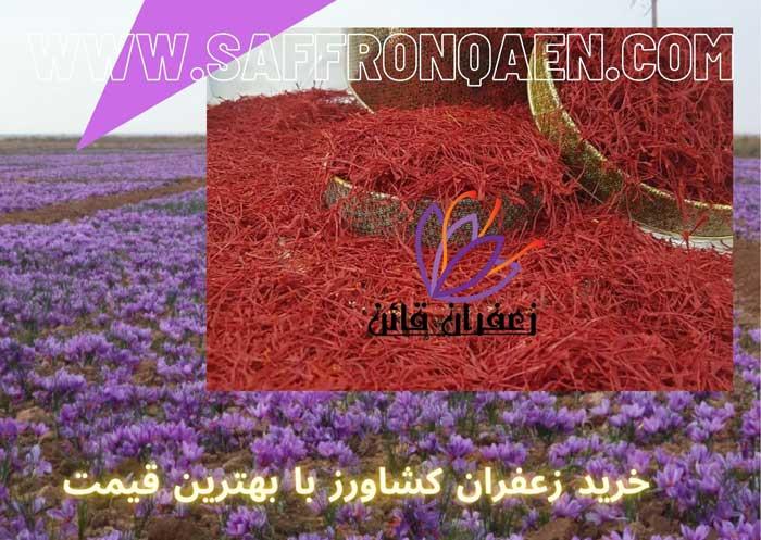 خرید زعفران کشاورزبا بهترین قیمت